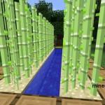 Ферма тростника в Minecraft