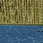 Сахарный тростник в Minecraft