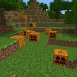 Семена тыквы в Minecraft