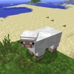 Майнкрафт овца и чем ее кормить