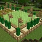 Как сделать урожай в Майнкрафт