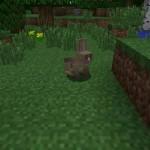 Пушистые кролики в обновлении 1.8